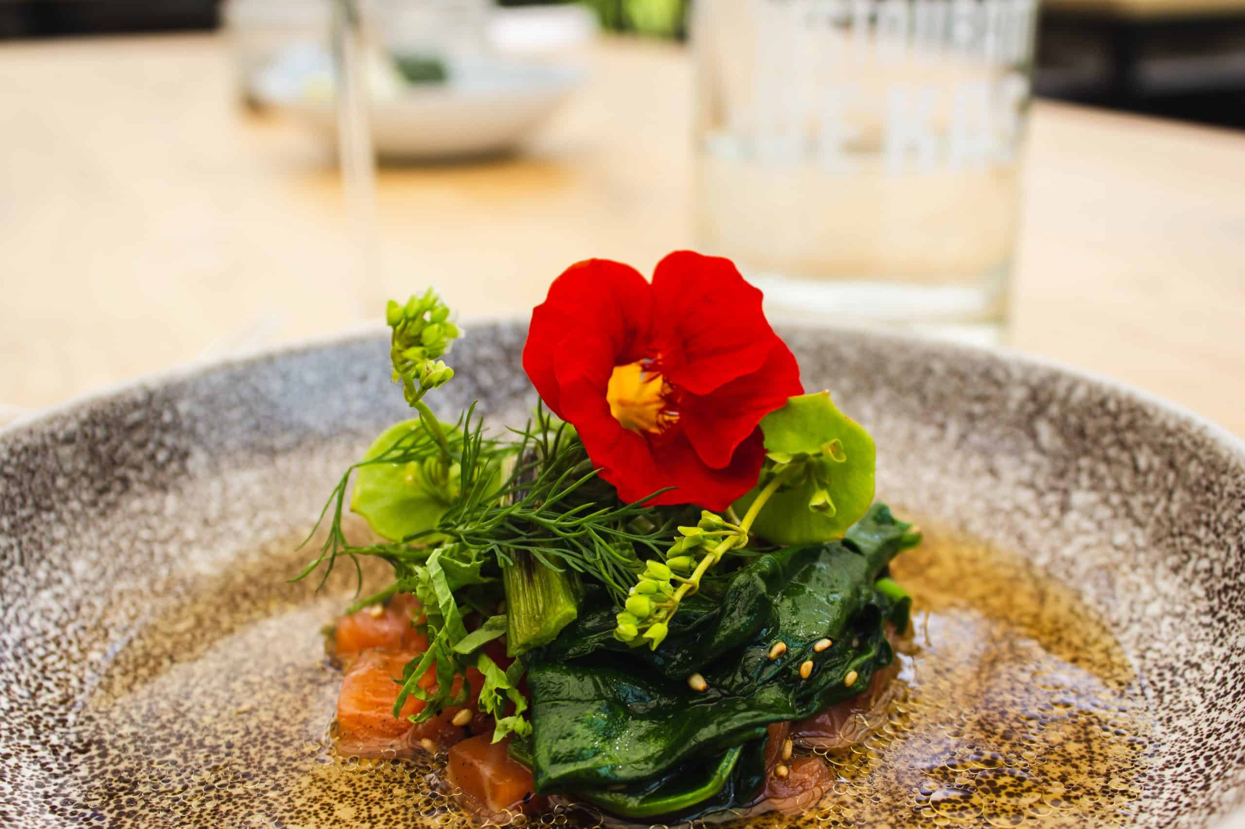 close-up photo of vegetable and red petaled flower on plate
