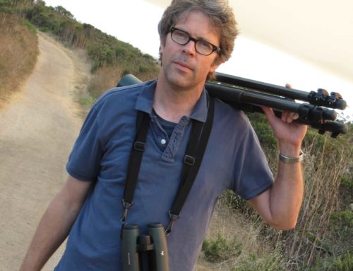 I interview Jonathan Franzen for The Bird Podcast